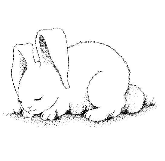 Coloriage de lapin gratuit