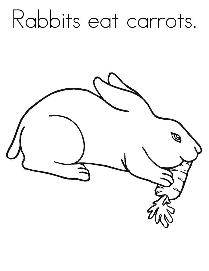 Coloriage lapin à imprimer