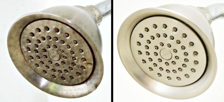 Nettoie le tartre du pommeau de douche