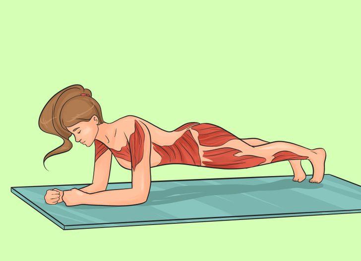 Planche sur les avant-bras classique
