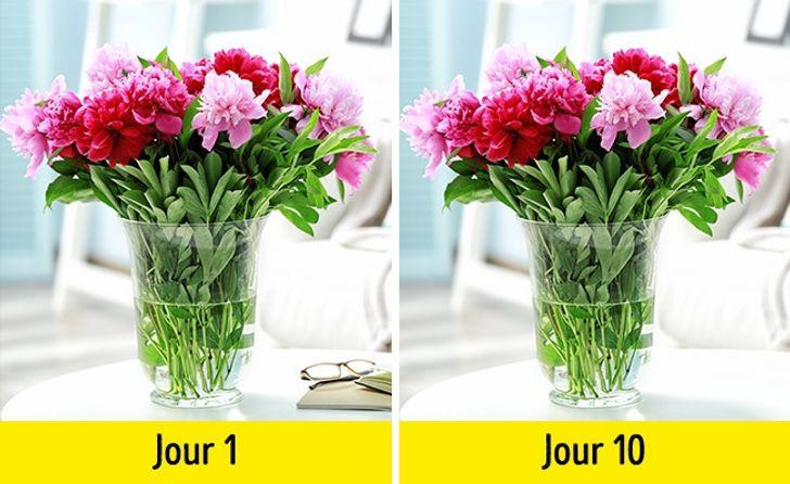 Pour que les fleurs fraîches durent plus longtemps