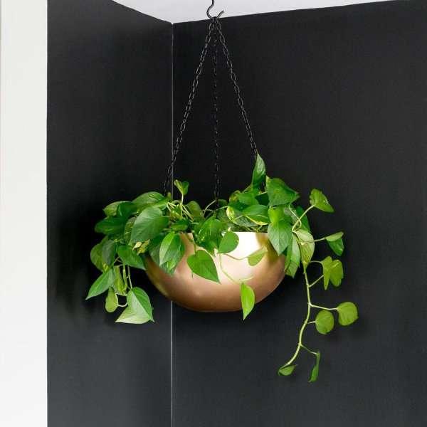 Recyclez un bol en métal en une jardinière suspendue