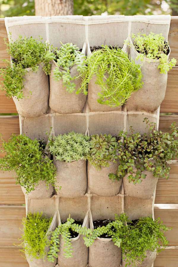 Utilisez un organisateur à chaussures pour faire une jardinière peu ordinaire