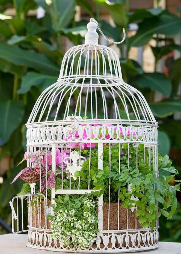 Vous pouvez vous servir d'une cage à oiseaux comme cache-pot