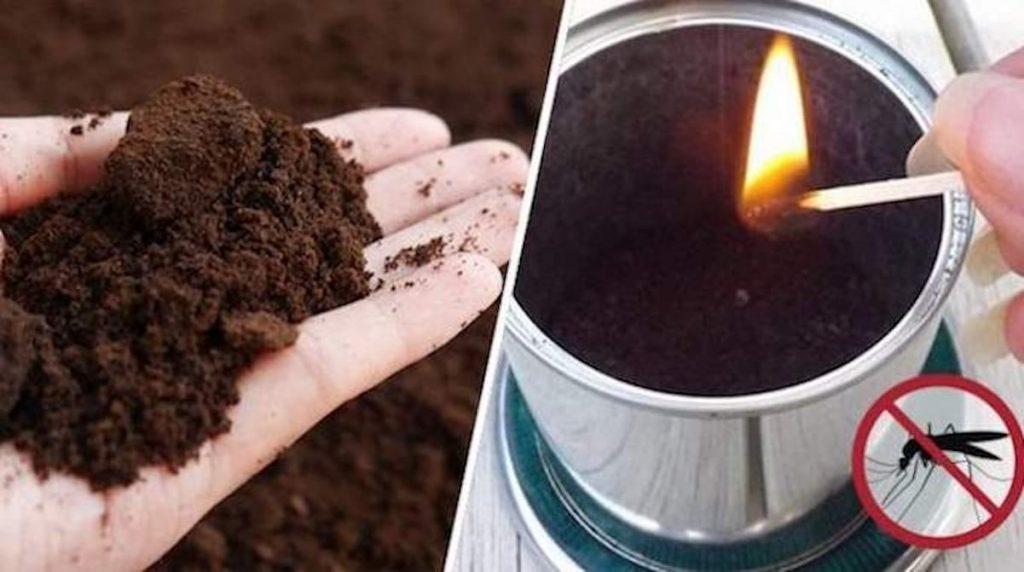 se débarasser des guêpes en brûlant du café moulu